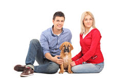 Couple with a cane corso puppy Royalty Free Stock Photos