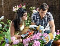 Couple caring garden Stock Photo
