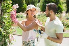 Couple caring their garden Stock Photography