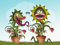 Couple of carnivorous plants. Illustration of couple of carnivorous plants royalty free illustration