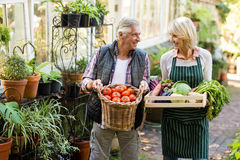 Couple carrying fresh vegetables Stock Photos