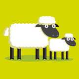 Couple Of Cartoon Sheep And Lamb With Color Royalty Free Stock Image