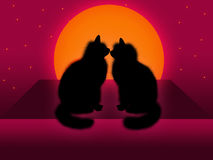 Couple of cats. Romantic background with two cats in moonlight Stock Photography