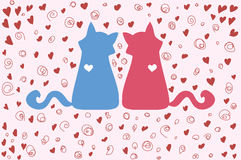 Couple of cats on Valentines Day Royalty Free Stock Photo