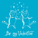 Couple cats on Valentines Day Royalty Free Stock Photo