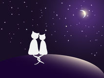 Couple of cats watching stars stock illustration