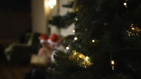 Couple celebrating Christmas consider an album of lovely photos blurred. First plan of tree in focus. Beautiful couple celebrating Christmas. Considering an stock video