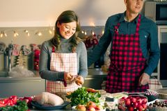 Couple celebrating Christmas in the kitchen cooking christmas duck or Goose royalty free stock photo