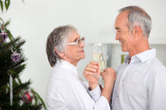Couple celebrating Christmas Stock Photos