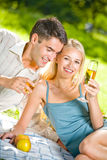 Couple celebrating at picnic. Young happy couple celebrating with champagne at picnic Stock Image