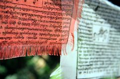 Buddhist Banners - Red and White Stock Photos