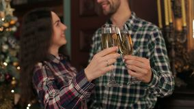 Couple with champagne near the Christmas tree. Happy loving couple clinking glasses of champagne against the decorated Christmas tree, focus on glasses stock footage