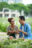 Couple Chatting in Park. Portrait of loving Asian couple chatting on date in green park stock image