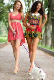 Couple cheerful girls in the street Royalty Free Stock Images