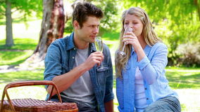 Couple cheering with champagne. In a park stock footage