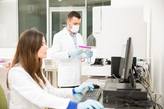 Couple of chemists working in a lab Stock Images