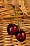 Couple Cherries Stock Photography