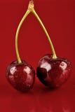 Couple Cherries Stock Photography