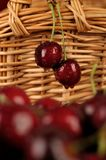 Couple Cherries Stock Image