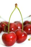 Couple of cherries Stock Images
