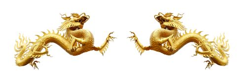 Chinese golden dragon isolated on white with clipping path. Couple chinese golden dragon isolated on white with clipping path.Golden traditional chinese dragon Stock Images