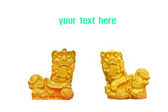 Couple of chinese golden lion statues Stock Images