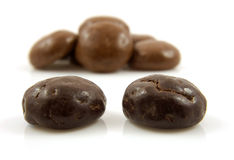 Couple of chocolate ginger nuts in closeup Stock Photo