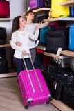 Couple choosing travel suitcase in shop Stock Photos