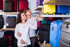 Couple choosing travel suitcase in shop Royalty Free Stock Images