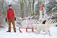 Couple with christmas gifts on sled Stock Photos