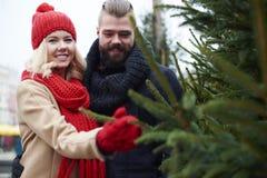 Couple with Christmas tree stock image