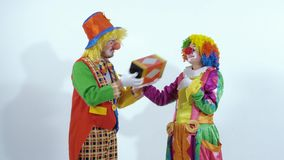 A couple of circus clowns playing with little box against white background stock footage