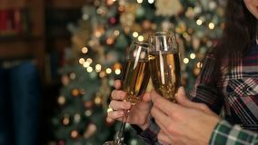 Couple clinks glasses of champagne for Christmas. Loving couple clink glasses of champagne on the background of the Christmas tree. The New year celebration stock video