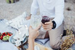 Couple clinks glasses on chic picnic Royalty Free Stock Photos