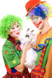 Couple of clowns with a white rabbit. Isolated Stock Photos