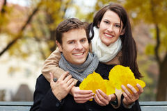 Couple collecting leaves Stock Photography