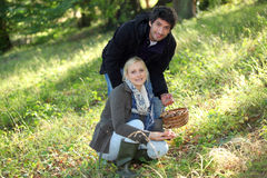 Couple collecting mushrooms Stock Photography