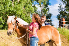 Couple combing horse on farm Stock Images