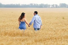 Couple in corn field Royalty Free Stock Photography