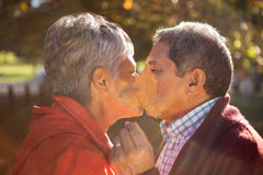 Couple covering face with leaf while kissing Stock Photos