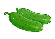 Couple cucumber vector illustration eps10 white Stock Photos