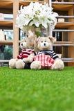 A couple of cute bear dolls Stock Photos