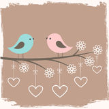 Couple of cute birds Royalty Free Stock Photography