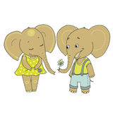 Couple cute elephants fallen in love. Vector funny illustration on white background for Valentine`s Day, wedding design, scrapbook, gift wrapping paper Stock Photography