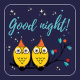 Couple of cute vector owls with hats on the tree branch. Children s illustration quote good night for the cards. design Stock Image
