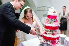 Couple is cutting amazing tasty cake decorated with swans pink l Royalty Free Stock Photography