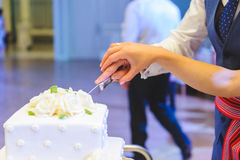 Couple Cutting Cake Royalty Free Stock Images