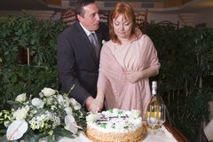 Couple cutting the cake Royalty Free Stock Image