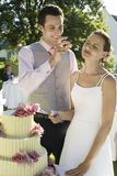 Couple Cutting Wedding Cake Stock Photo