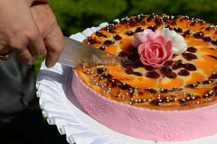 Couple cutting the Wedding cake Royalty Free Stock Photos